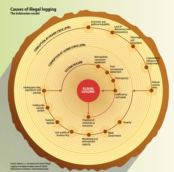 Causes of illegal logging