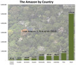 Amazon by country (area - sq km)