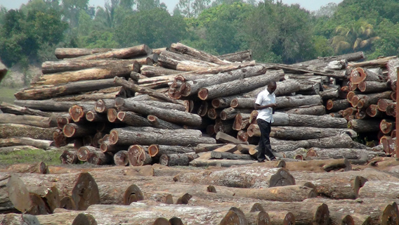 Log truck en route to Beira, Mozambique. Photo © : EIA.