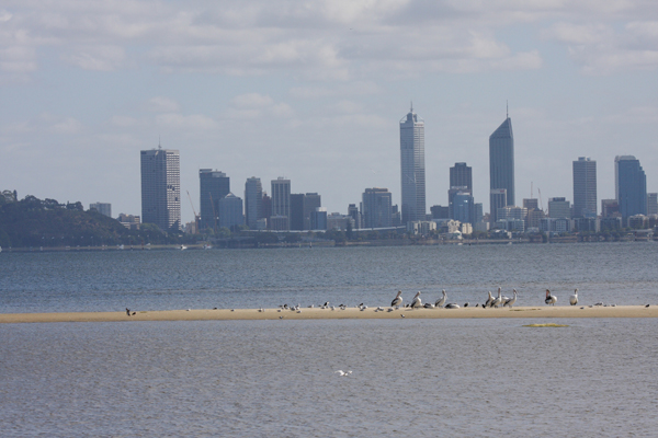 Coastal development in Perth, Australia. Photo by Robert Clemens at University Queensland.