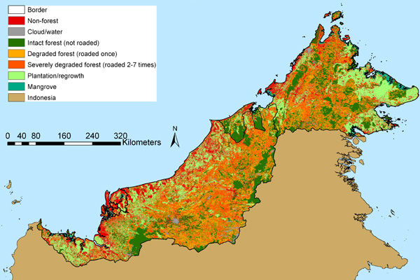 The state of forests in Malaysian Borneo (Sabah and Sarawak) in 2009