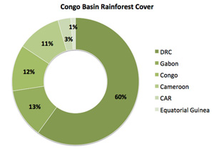 Forest cover in Congo rainforest countries