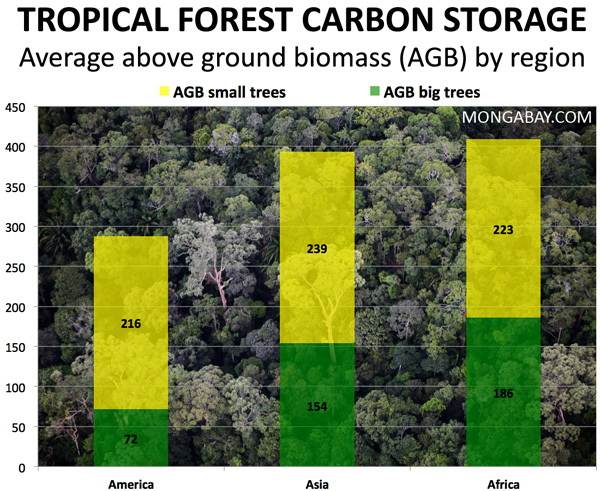 chart showing Rainforest above-ground biomass by region