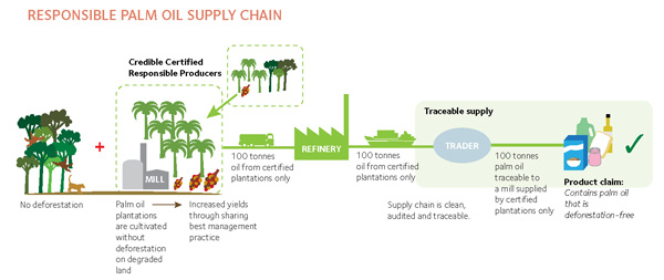 Greenpeace's idealized vision for sustainable palm oil production