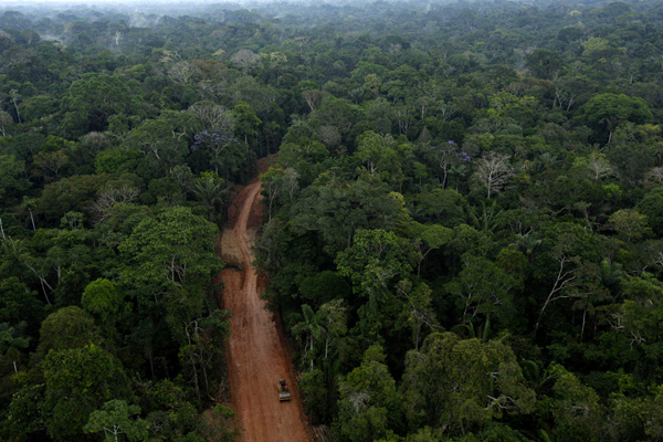 Illegal oil road through the Amazon rainforest