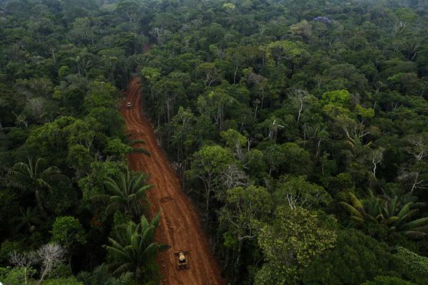 Secret Petroamazonas road in the Amazon rainforest