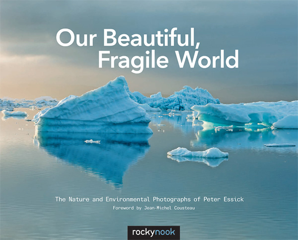 Book Summary: Our Beautiful, Fragile World