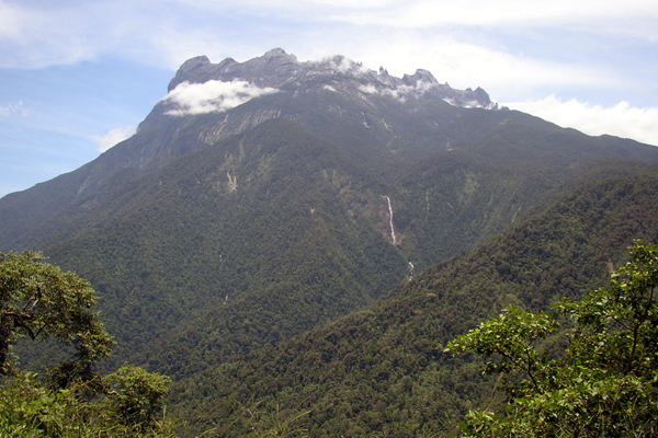 One of the study sites: Mount Kinabalu, Sabah, Borneo. Photo courtesy of NepGrower at the English language Wikipedia under Creative Commons Attribution-Share Alike 3.0 Unported license.