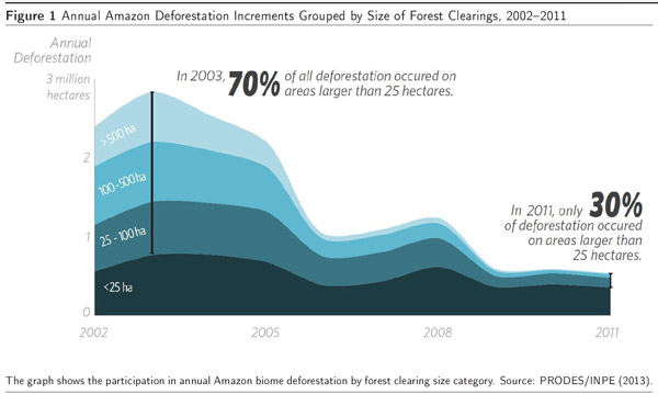 Chart: deforestation by small-holders in the Amazon rainforest