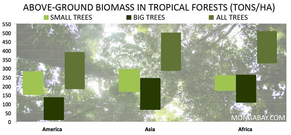 Graph showing Above-Ground Biomass in Tropical Forests (metric tons of carbon per ha) for Small Trees and Big Trees is Asia, Africa, and Latin America