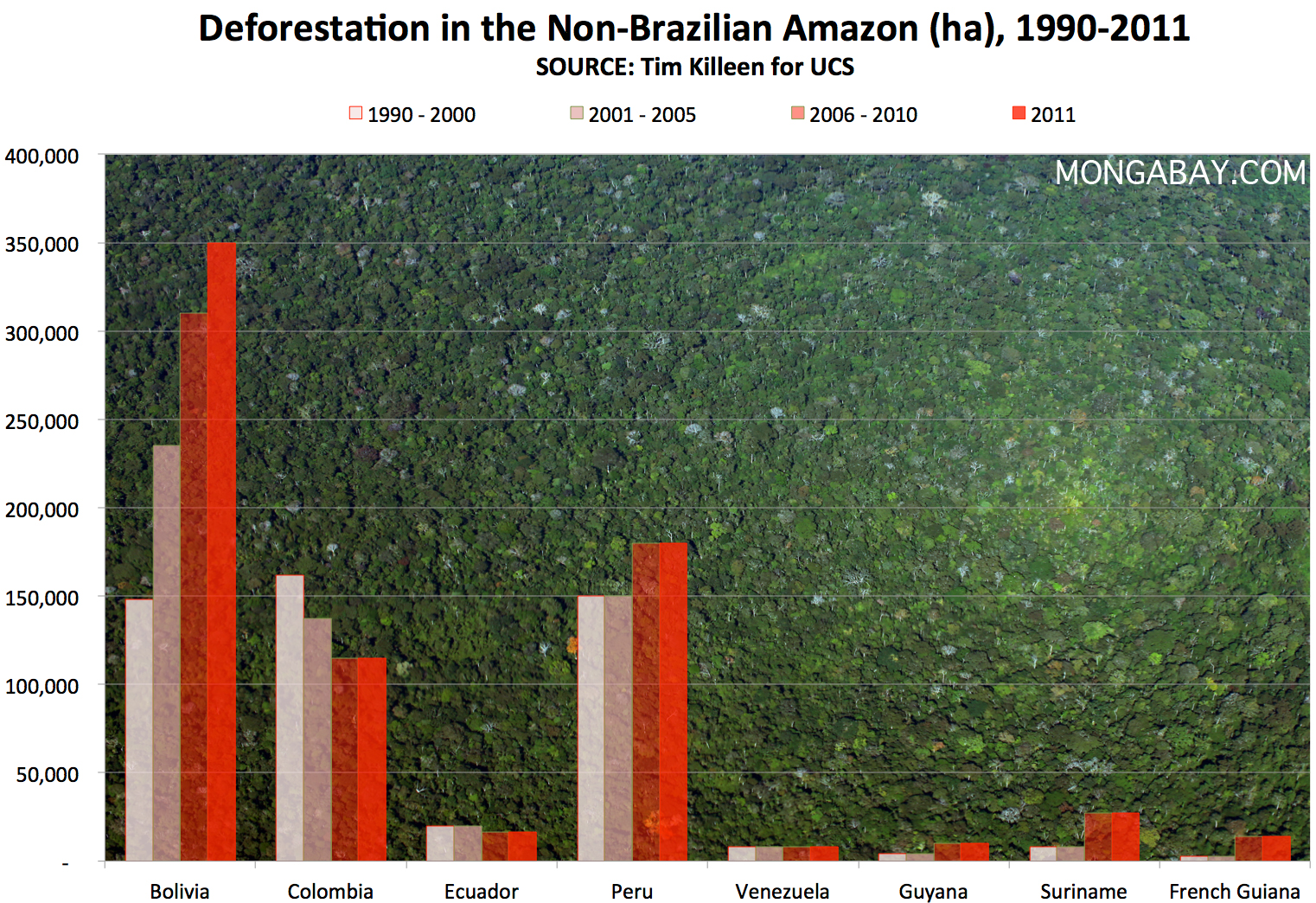 an analysis of cutting down the brazilian rainforest Greenpeace brazil has released a report at the world social forum in belém showing that up to 80 percent of deforestation in the amazon rainforest is due.