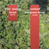 CHART: Forest loss in Indonesia and Malaysia