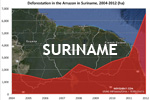 Chart showing annual deforestation in Suriname's Amazon rainforest territory between 2004 and 2012