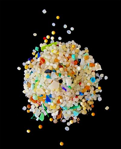 Microscopic fragments of plastic -- or microplastics -- are pieces of plastic less than 5 mm in diameter and are a global marine pollutant. This image shows microplastic fragments and pre-production pellets collected from a sandy shoreline in Europe; these items are continually fragmenting in the environment. Current Biology, Wright et al.