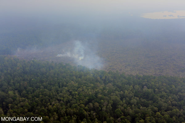 Peatland encroachment and fire in Riau, Indonesia