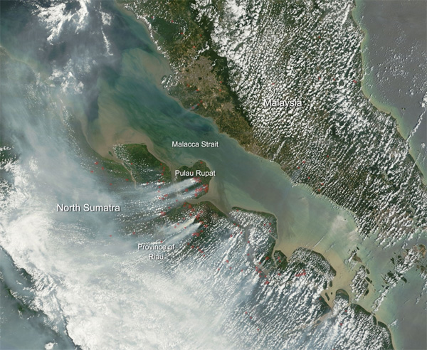 This natural-color satellite image was collected by the Moderate Resolution Imaging Spectroradiometer aboard the Terra satellite on Feb. 28, 2014. Actively burning areas, detected by MODIS's thermal bands, are outlined in red..