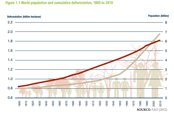 Chart: Cumulative deforestation and population growth, 1800-2010. Courtesy of UNREDD.