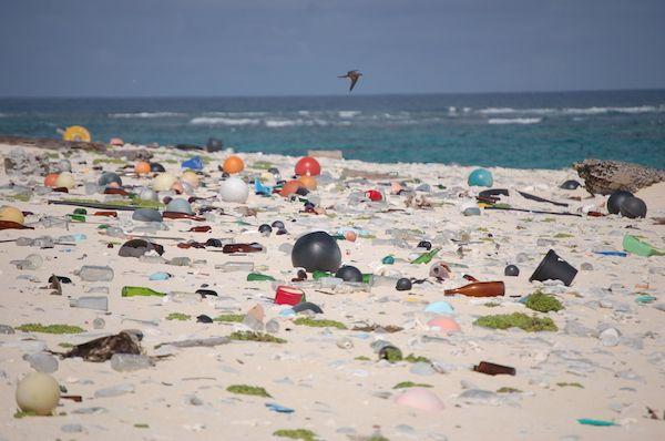 Marine debris litters a beach on Laysan Island in the Hawaiian Islands National Wildlife Refuge. Photo courtesy of the U.S. Fish and Wildlife Service.