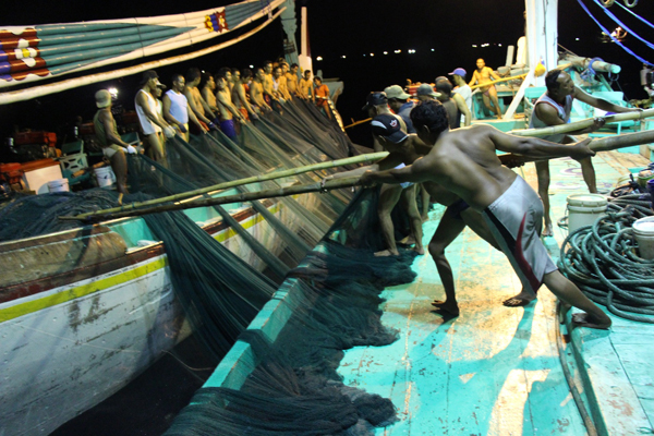 Men use bamboo poles to edge their partner boat away from the seine net. The average crew on a paired set of purse seiners in the Bali Strait consists of fifty-five men.