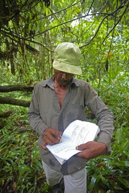 A local indigenous hunter from the Miskiti tribe noting his observations on a line transect route. Poto by Sune Holt.