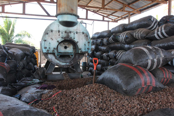 Sacks of Brazil nuts await drying at the ASCART processing plant in Puerto Maldonado, Peru. Photo by Barbara Fraser.