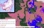Greenpeace: zero deforestation pioneer makes progress, but still has work to do