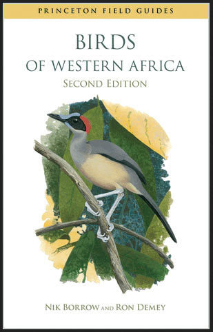 Birds of Western Africa – book review