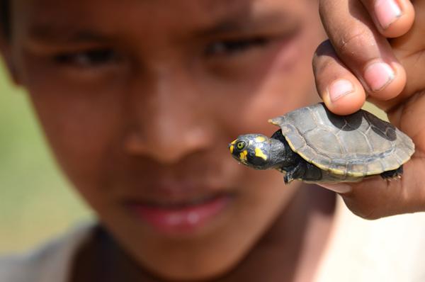 Boy shows off a turtle. Photo by: Alvaro del Campo.