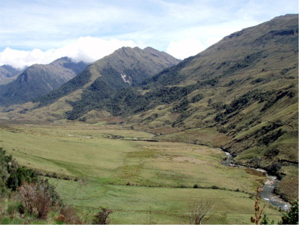 Rain and snow give birth to this Andes Mountain stream, which flows uninterrupted from its source toward the Amazon.