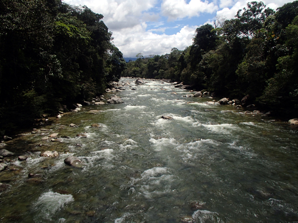 The Piatua River forms part of a strategic, free-flowing, Andean Amazon watershed corridor in the Napo basin and draws tourists from around the world who contribute to a sustainable economy. Photo credit: Ecuadorian Rivers Institute.