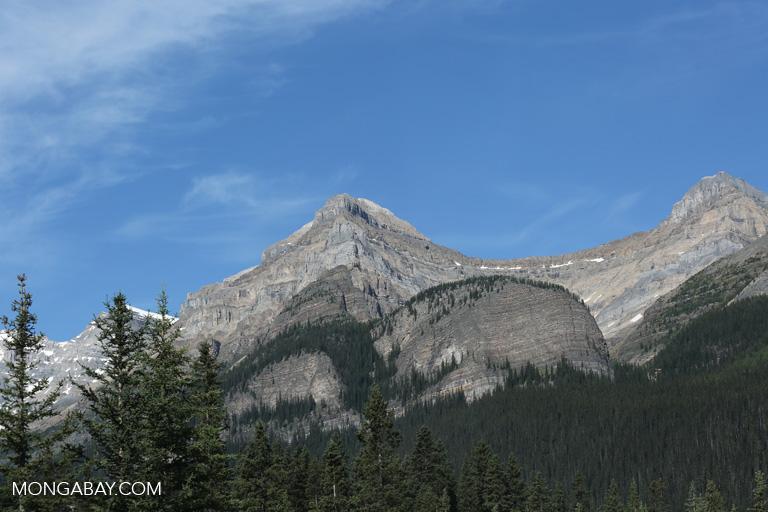 Mountains near Lake Louise