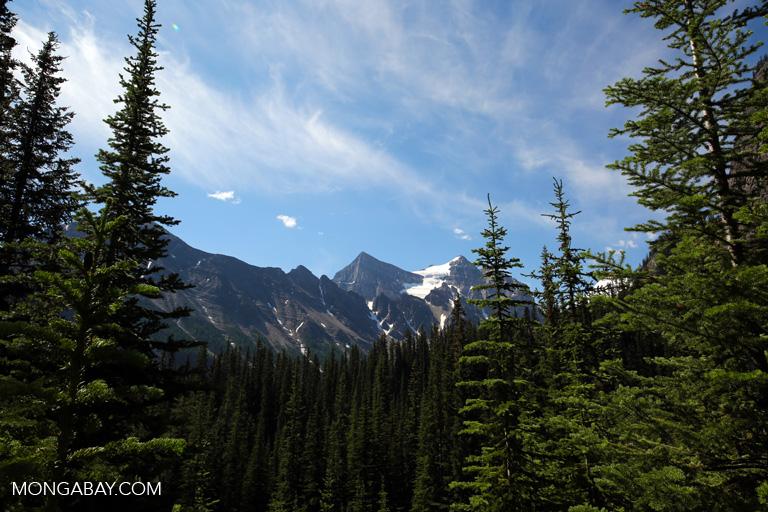 Mountain peak near Lake Louise