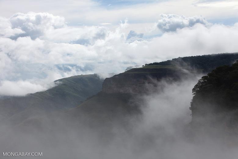 Plateau in Chapada [brazil_0055]
