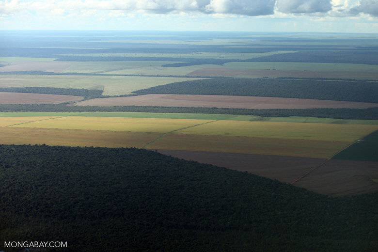 Patchwork of legal forest reserves, pasture, and soy farms in the Brazilian Amazon