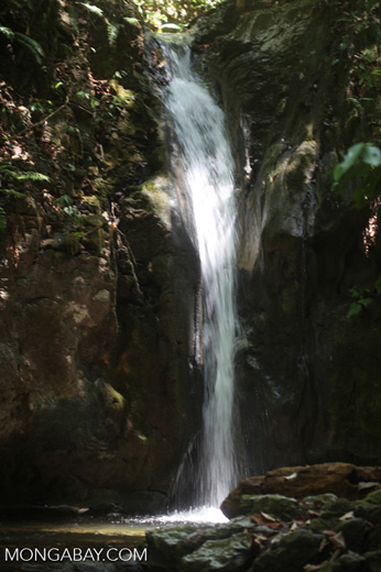 Waterfall on the property of el Remanso Lodge