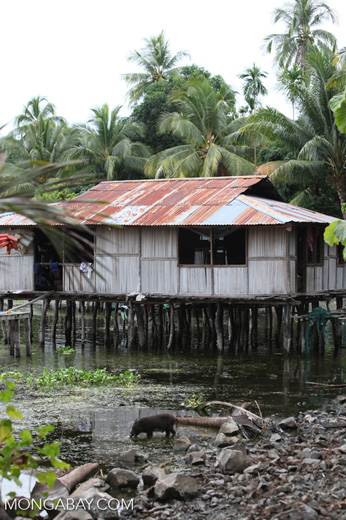 Lake Sentani homes on stilts