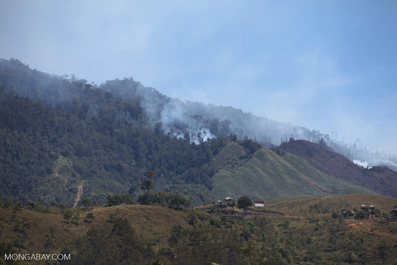 Agricultural and forest fires in New Guinea