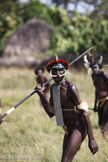 Dani men in ceremonial battle
