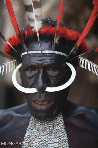 Dani man in New Guinea with hog bone in his nose