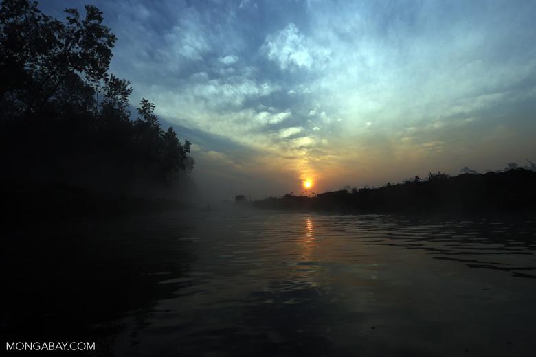 Senja di hutan yang telah mengalami deforestasi di Riau. Foto: Rhett Butler