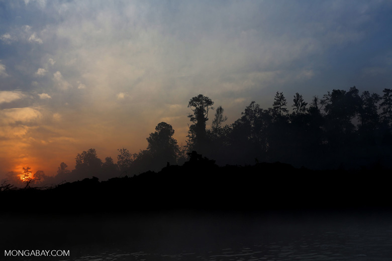 Sunset over a deforested area [riau_0313]