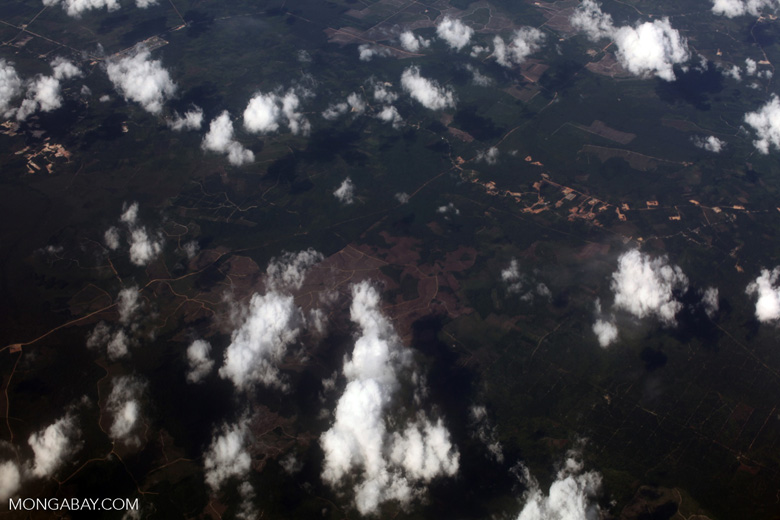 Aerial view of deforestation in Sumatra