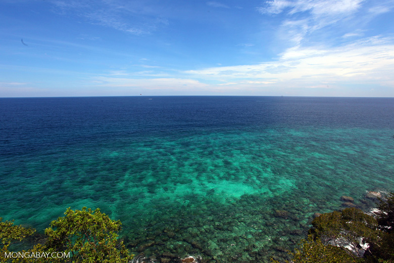Sapi Island -- sabah_0215