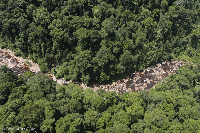 Rainforest river in Borneo -- sabah_aerial_1454
