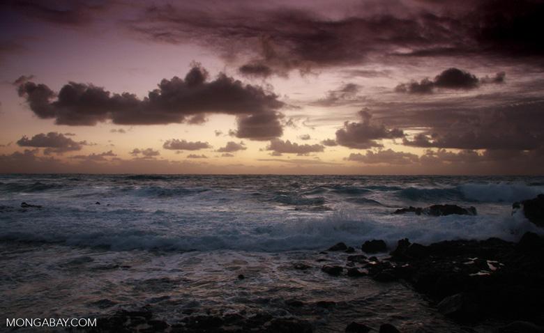 Hawaiian sunrise near Hana