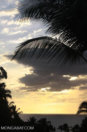 Sundown in Hawaii