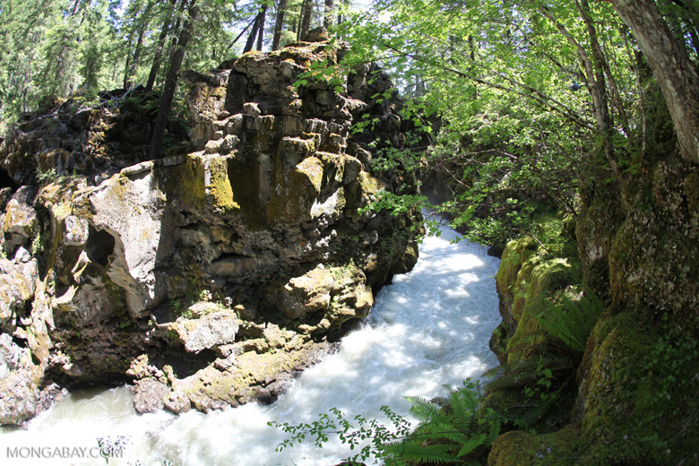 Rouge Gorge Chasm