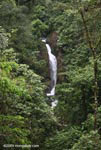 Waterfall in Arenal Hanging Bridges Private Reserve