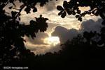 Sunset over the Costa Rican rainforest [costa-rica_1136]
