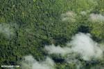 Overhead view of rainforest in Costa Rica [costa_rica_aerial_0322]